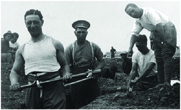 digging a trench in Malta in 1915